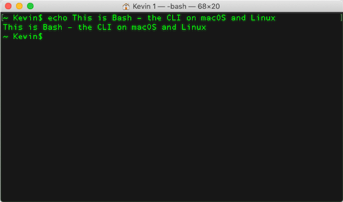 Screenshot from a Bash Terminal Session