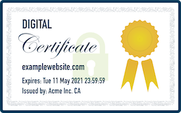Physical Representation of a Digital Certificate